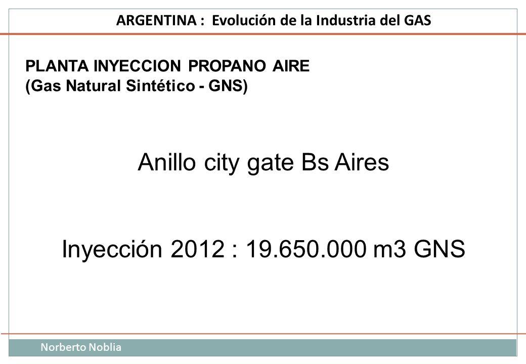 Norberto Noblia ARGENTINA : Evolución de la Industria del GAS PLANTA INYECCION PROPANO AIRE (Gas Natural Sintético - GNS) Anillo city gate Bs Aires In
