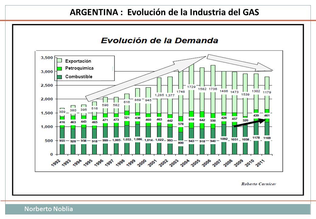 Norberto Noblia ARGENTINA : Evolución de la Industria del GAS Petroquímica Combustible Exportación