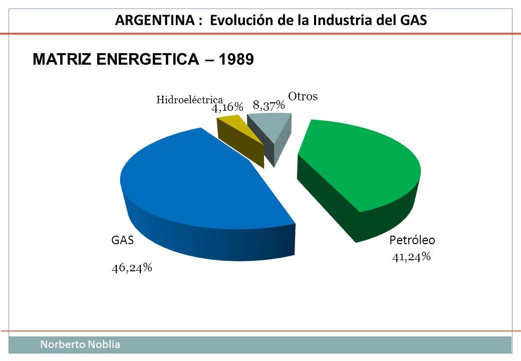 Norberto Noblia ARGENTINA : Evolución de la Industria del GAS MATRIZ ENERGETICA – 1989