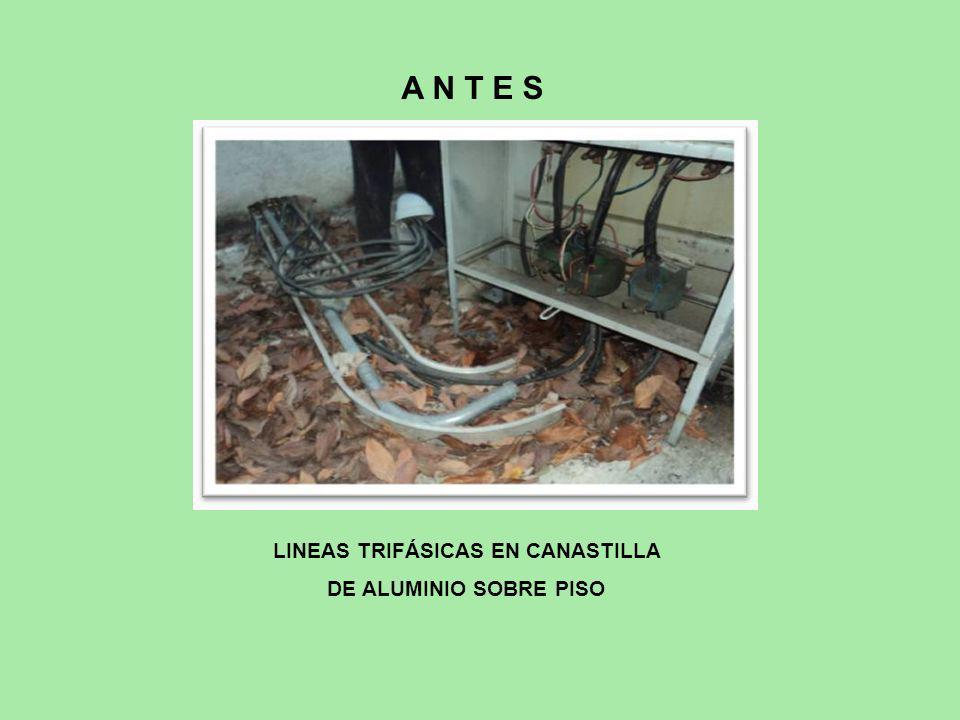 LINEAS TRIFÁSICAS EN CANASTILLA DE ALUMINIO SOBRE PISO A N T E S