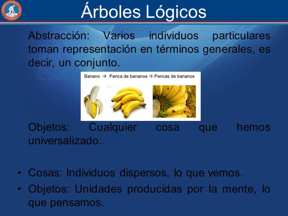 Árboles Lógicos Abstracción: Varios individuos particulares toman representación en términos generales, es decir, un conjunto. Objetos: Cualquier cosa