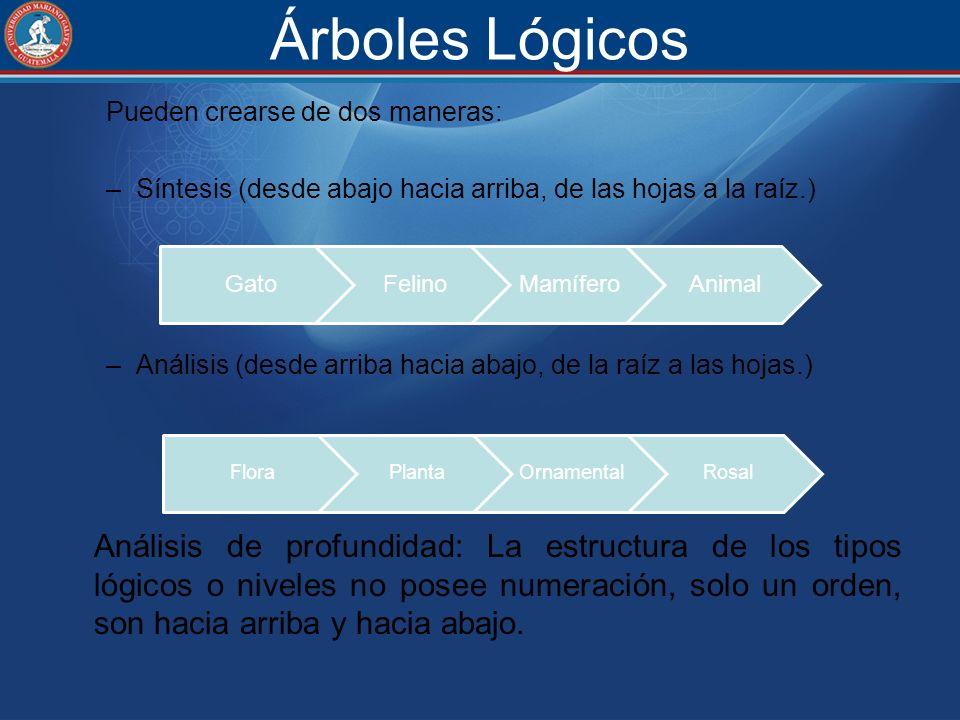 Árboles Lógicos Pueden crearse de dos maneras: –Síntesis (desde abajo hacia arriba, de las hojas a la raíz.) –Análisis (desde arriba hacia abajo, de l