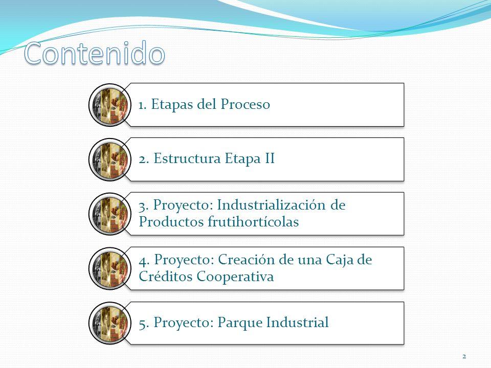 Formulación del Plan Estratégico 2009 Gestión de los Proyectos que componen el Plan Estratégico 2010 Ejecución de los Proyectos 3 Etapa IEtapa IIEtapa III