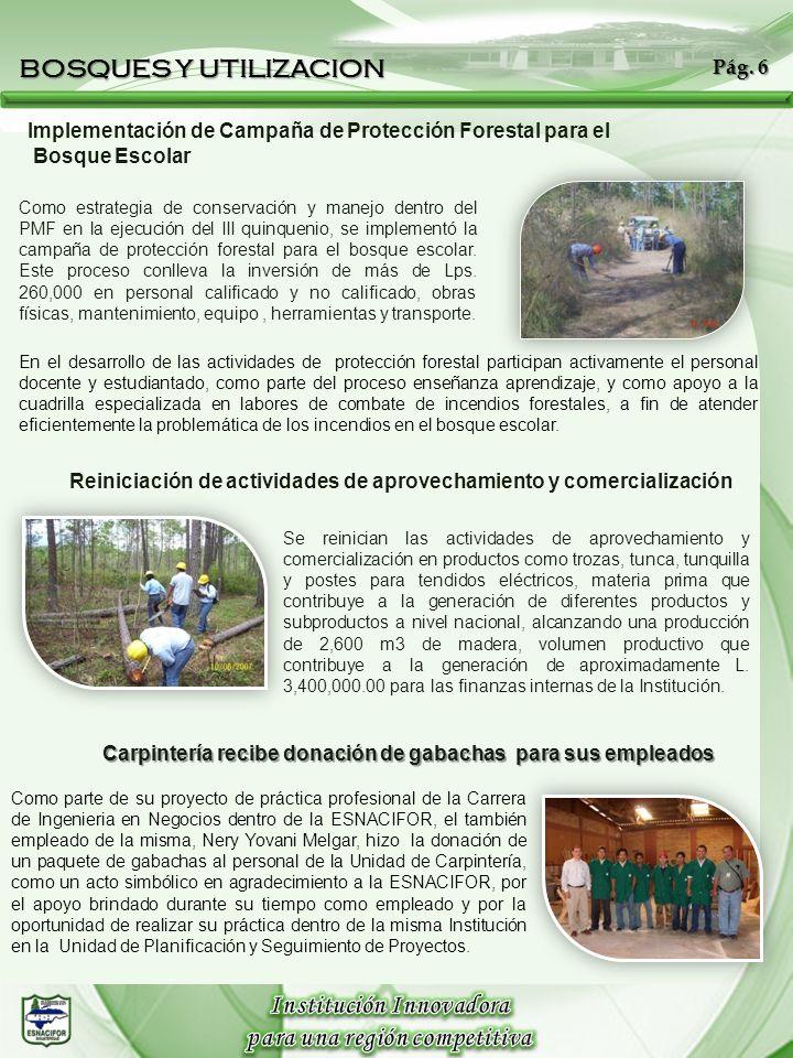 Implementación de Campaña de Protección Forestal para el Bosque Escolar Como estrategia de conservación y manejo dentro del PMF en la ejecución del II