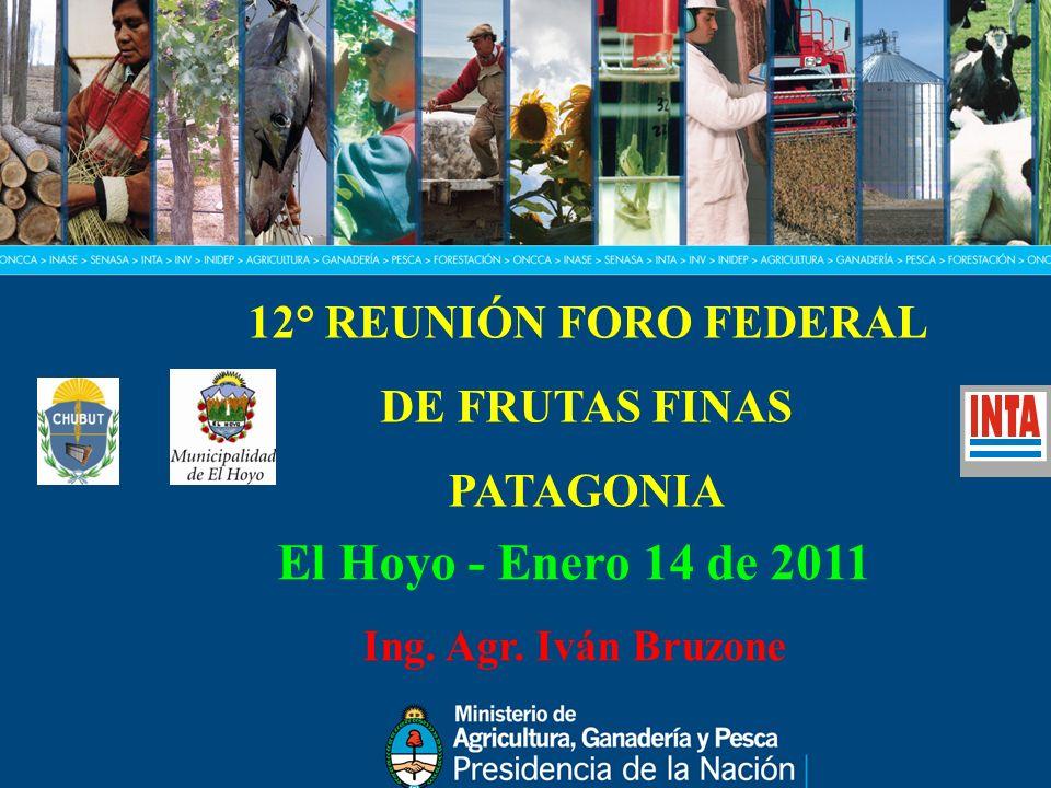 12° REUNIÓN FORO FEDERAL DE FRUTAS FINAS PATAGONIA El Hoyo - Enero 14 de 2011 Ing. Agr. Iván Bruzone