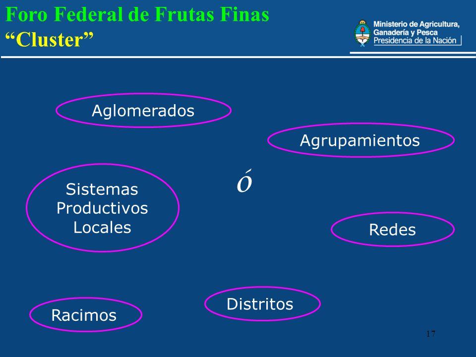 17 Aglomerados Distritos Sistemas Productivos Locales Racimos Agrupamientos Redes ó Foro Federal de Frutas Finas Cluster