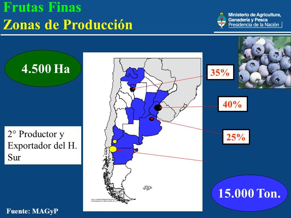20 15.000 Ton. 4.500 Ha 40% 25% 2° Productor y Exportador del H. Sur Frutas Finas Zonas de Producción 35% Fuente: MAGyP