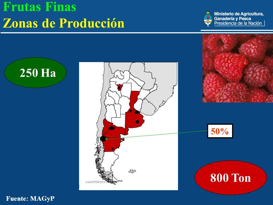 21 800 Ton Fuente: MAGyP 250 Ha 50% Frutas Finas Zonas de Producción
