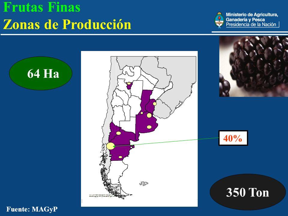 22 350 Ton 64 Ha 40% Fuente: MAGyP Frutas Finas Zonas de Producción