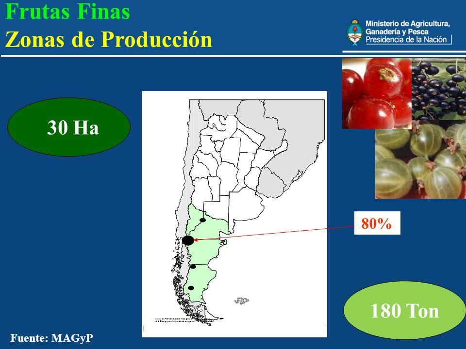23 180 Ton 30 Ha 80% Fuente: MAGyP Frutas Finas Zonas de Producción