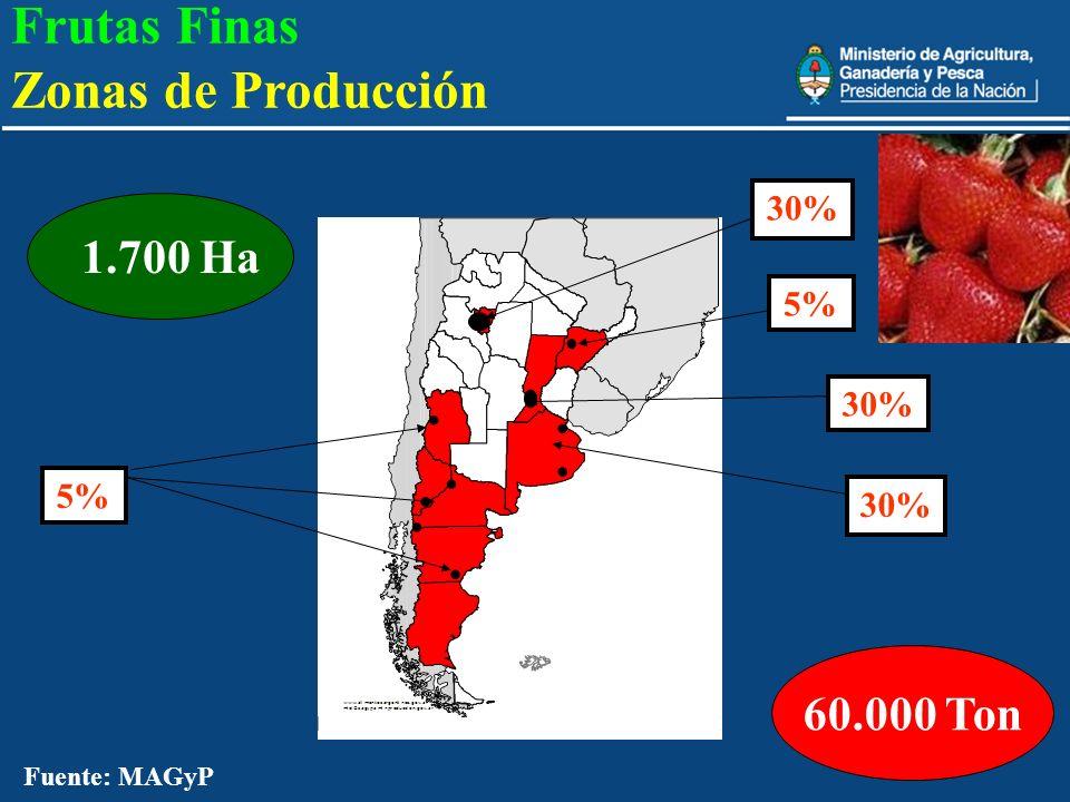 24 60.000 Ton 1.700 Ha 30% 5% Fuente: MAGyP Frutas Finas Zonas de Producción