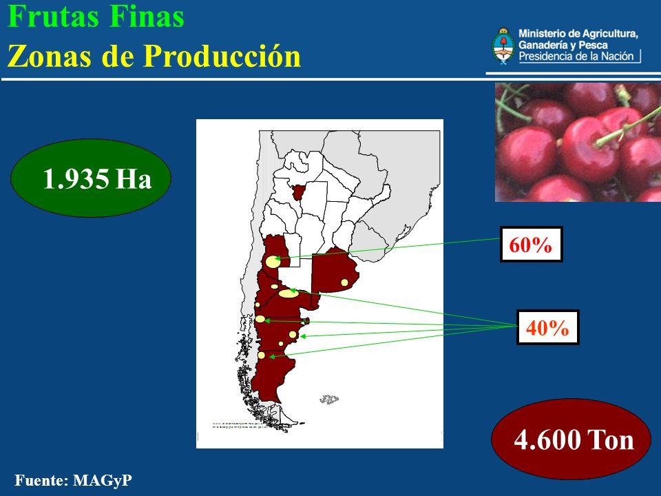 25 4.600 Ton 1.935 Ha 60% 40% Fuente: MAGyP Frutas Finas Zonas de Producción