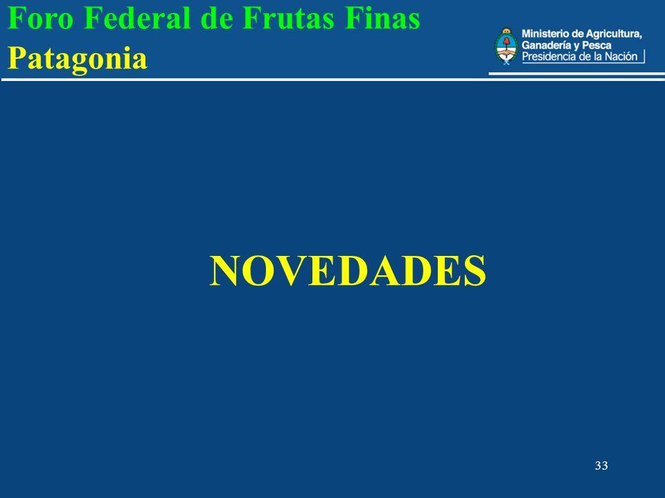 33 NOVEDADES Foro Federal de Frutas Finas Patagonia