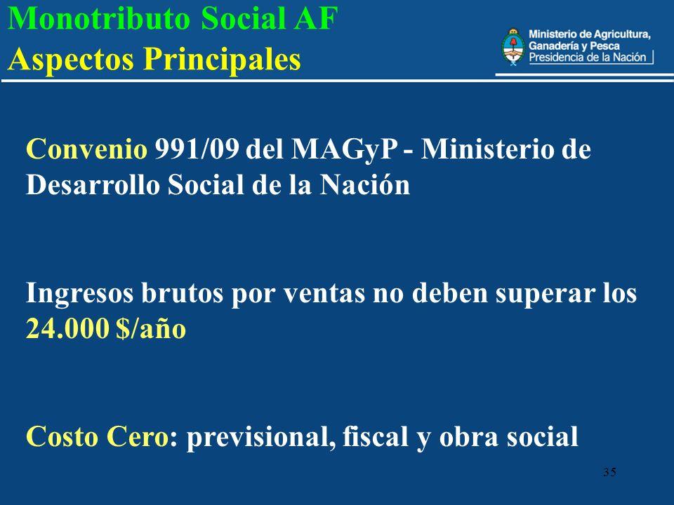 35 Convenio 991/09 del MAGyP - Ministerio de Desarrollo Social de la Nación Ingresos brutos por ventas no deben superar los 24.000 $/año Costo Cero: p
