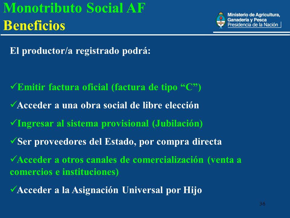 36 El productor/a registrado podrá: Emitir factura oficial (factura de tipo C) Acceder a una obra social de libre elección Ingresar al sistema provisi