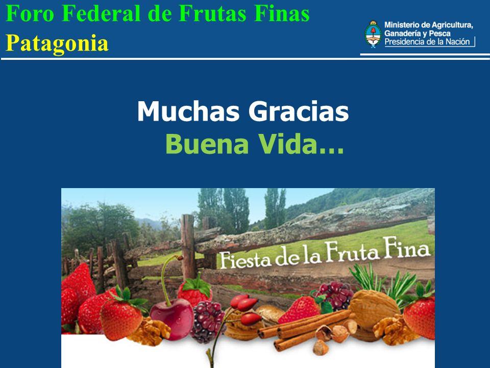 Muchas Gracias Buena Vida… Foro Federal de Frutas Finas Patagonia
