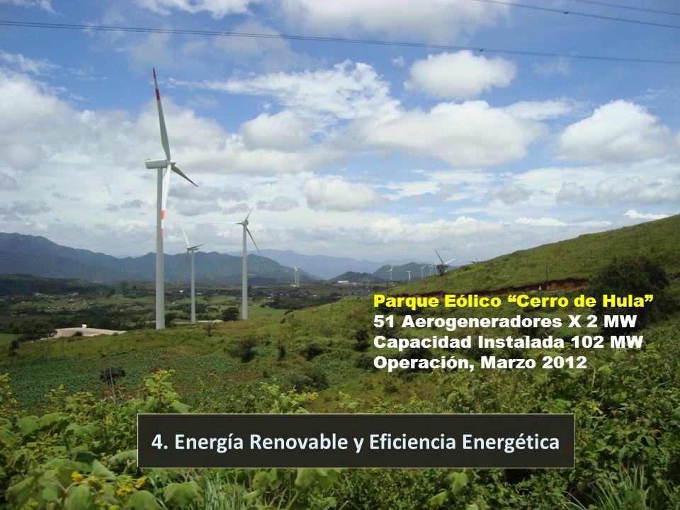 Comisión Nacional de Energía 15 4. Energía Renovable y Eficiencia Energética Parque Eólico Cerro de Hula 51 Aerogeneradores X 2 MW Capacidad Instalada