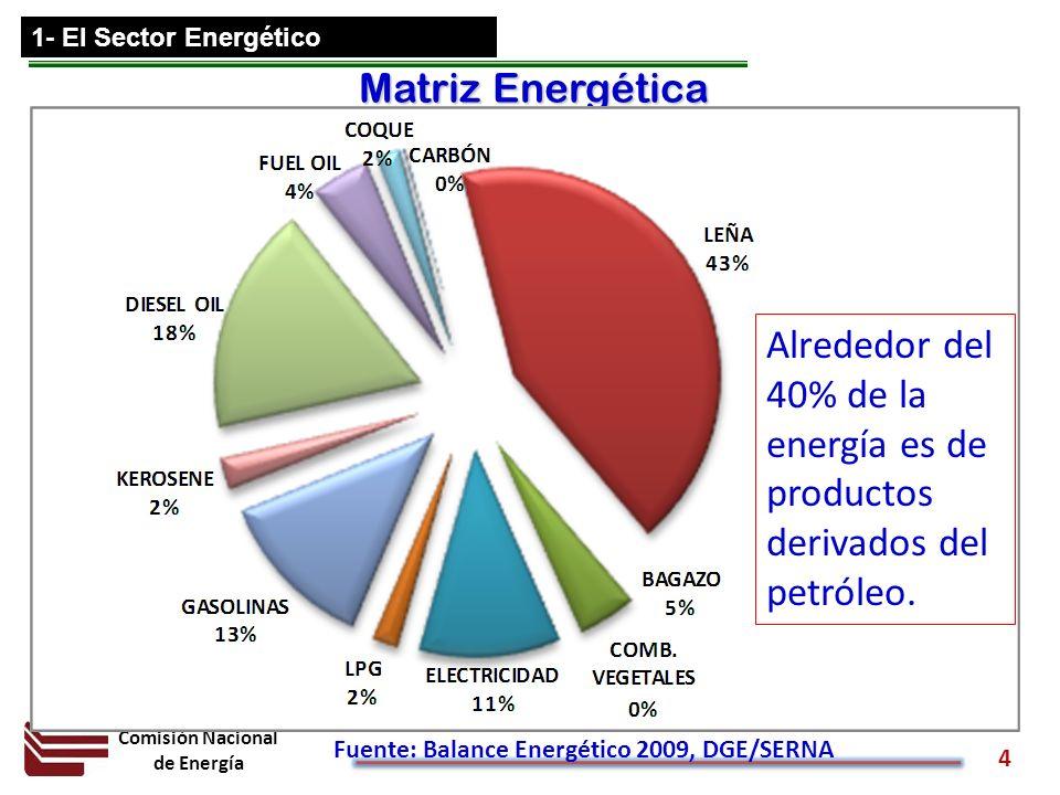 Comisión Nacional de Energía 4 Matriz Energética Fuente: Balance Energético 2009, DGE/SERNA Alrededor del 40% de la energía es de productos derivados