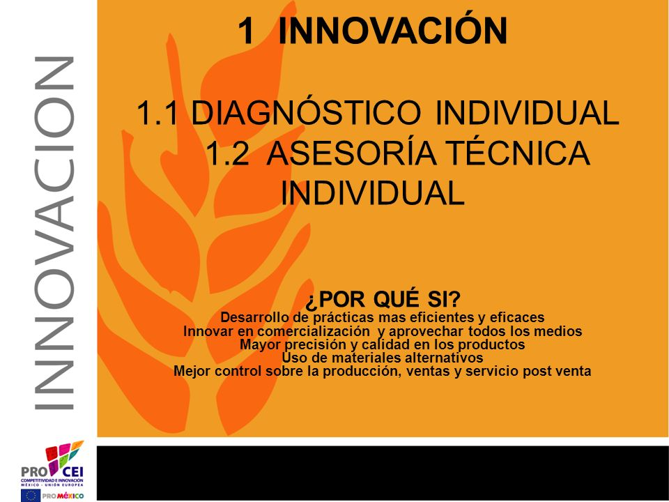 1 INNOVACIÓN 1.1 DIAGNÓSTICO INDIVIDUAL 1.2 ASESORÍA TÉCNICA INDIVIDUAL ¿POR QUÉ SI? Desarrollo de prácticas mas eficientes y eficaces Innovar en come
