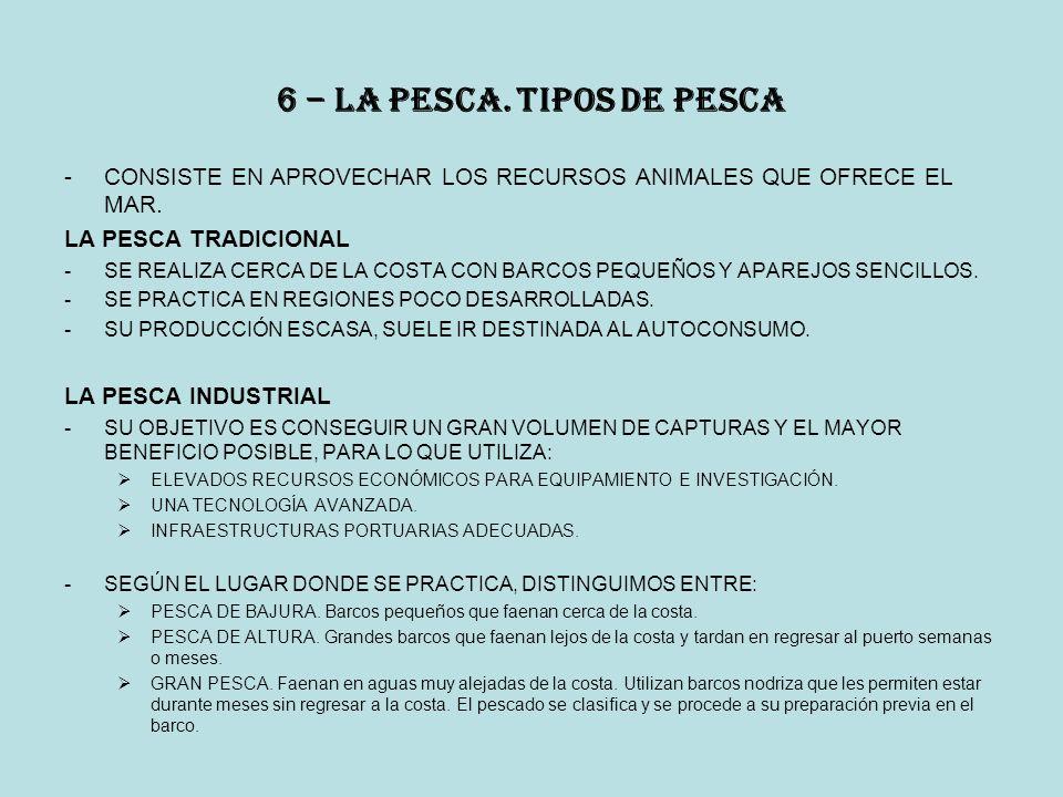 6 – la pesca.Tipos de PESCA -CONSISTE EN APROVECHAR LOS RECURSOS ANIMALES QUE OFRECE EL MAR.