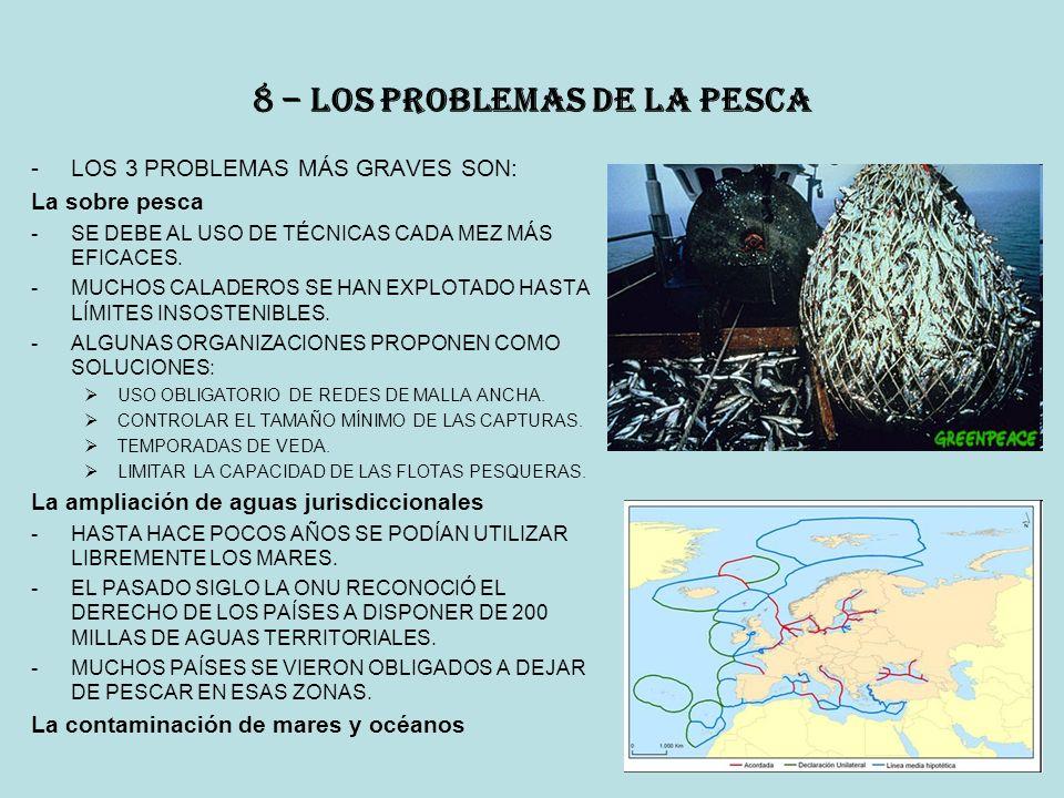 8 – los problemas de la pesca -LOS 3 PROBLEMAS MÁS GRAVES SON: La sobre pesca -SE DEBE AL USO DE TÉCNICAS CADA MEZ MÁS EFICACES.