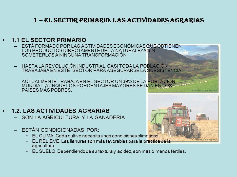 1 – EL SECTOR PRIMARIO.