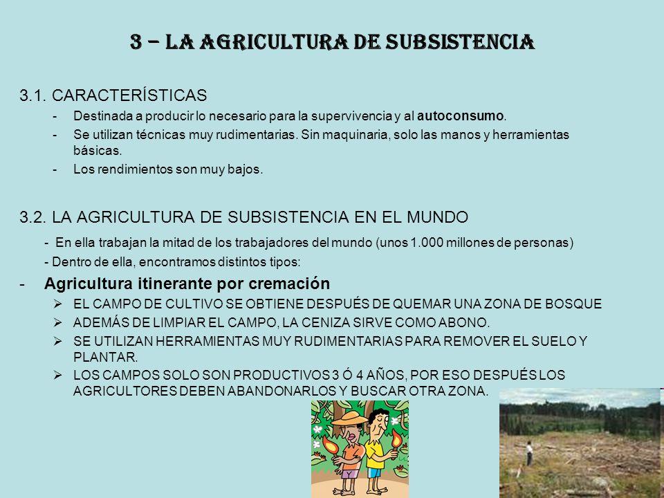 3 – la agricultura de subsistencia 3.1.