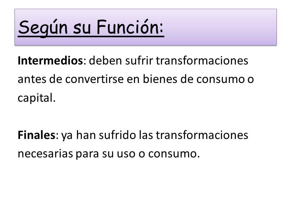 Según su Función: Intermedios: deben sufrir transformaciones antes de convertirse en bienes de consumo o capital. Finales: ya han sufrido las transfor