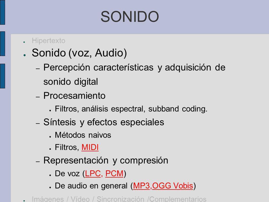 IMÁGENES DIGITALES Hipertexto/Sonido Imágenes digitales – Percepción, características, adquisición presentación Color y luz.