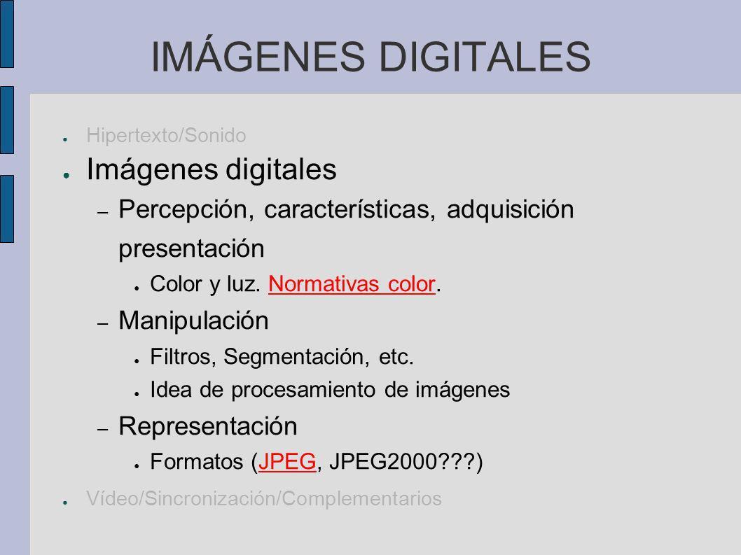 VÍDEO DIGITAL Hipertexto Sonido (voz, Audio) Imágenes Vídeo – Características temporales de la vista.
