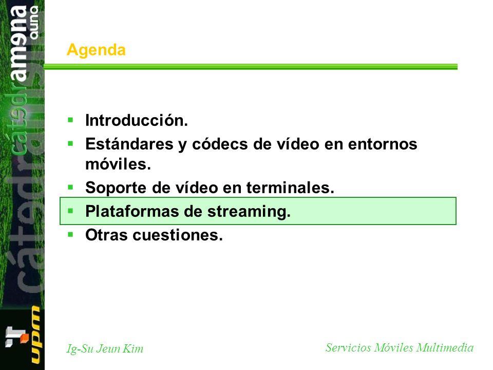 Servicios Móviles Multimedia Ig-Su Jeun Kim Agenda Introducción. Estándares y códecs de vídeo en entornos móviles. Soporte de vídeo en terminales. Pla