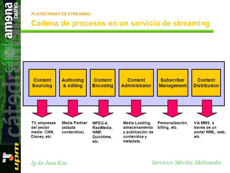 Servicios Móviles Multimedia Ig-Su Jeun Kim Cadena de procesos en un servicio de streaming Content Sourcing TV, empresas del sector media: CNN, Disney