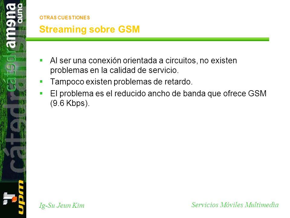Servicios Móviles Multimedia Ig-Su Jeun Kim Streaming sobre GSM Al ser una conexión orientada a circuitos, no existen problemas en la calidad de servi