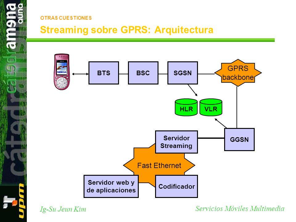 Servicios Móviles Multimedia Ig-Su Jeun Kim Streaming sobre GPRS: Arquitectura RTP BTSBSCSGSN GGSN GPRS backbone Fast Ethernet Servidor Streaming Codi