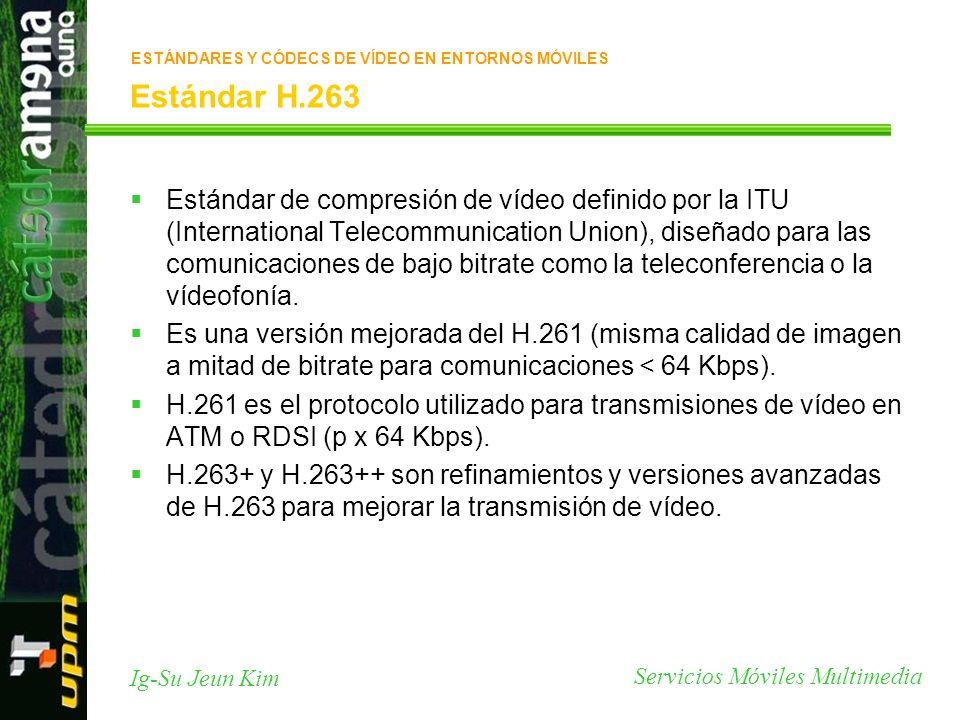 Servicios Móviles Multimedia Ig-Su Jeun Kim Estándar H.263 ESTÁNDARES Y CÓDECS DE VÍDEO EN ENTORNOS MÓVILES Estándar de compresión de vídeo definido p