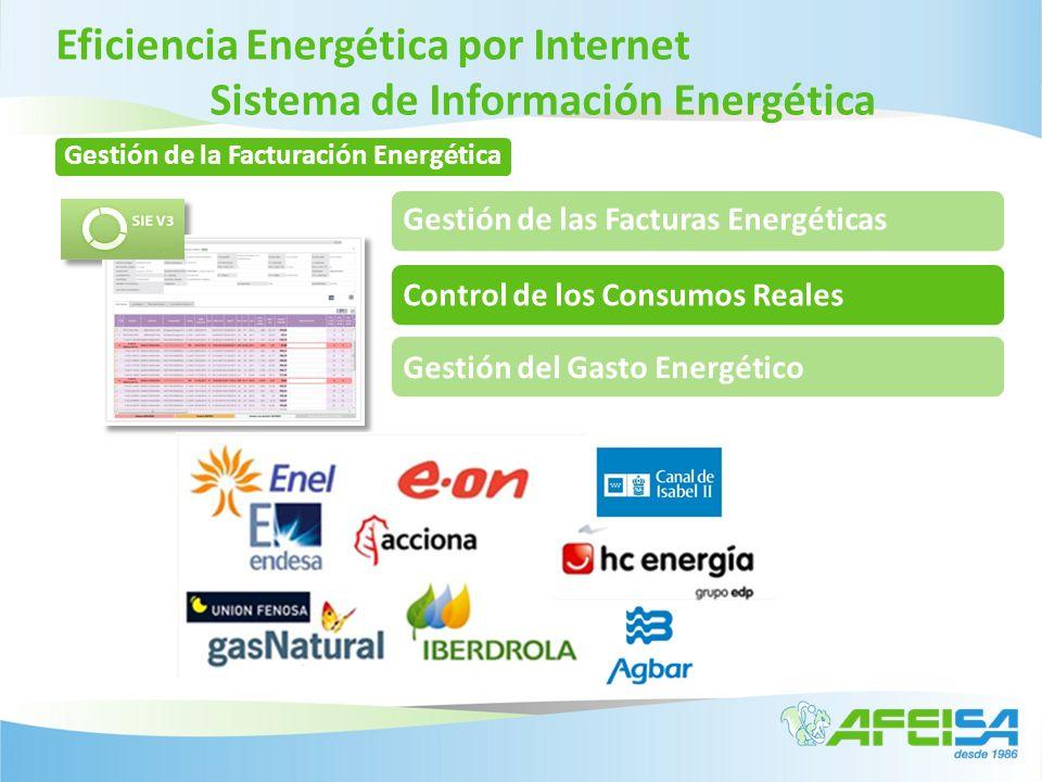 Eficiencia Energética por Internet Sistema de Información Energética Gestión de las Facturas Energéticas Control de los Consumos RealesGestión del Gas