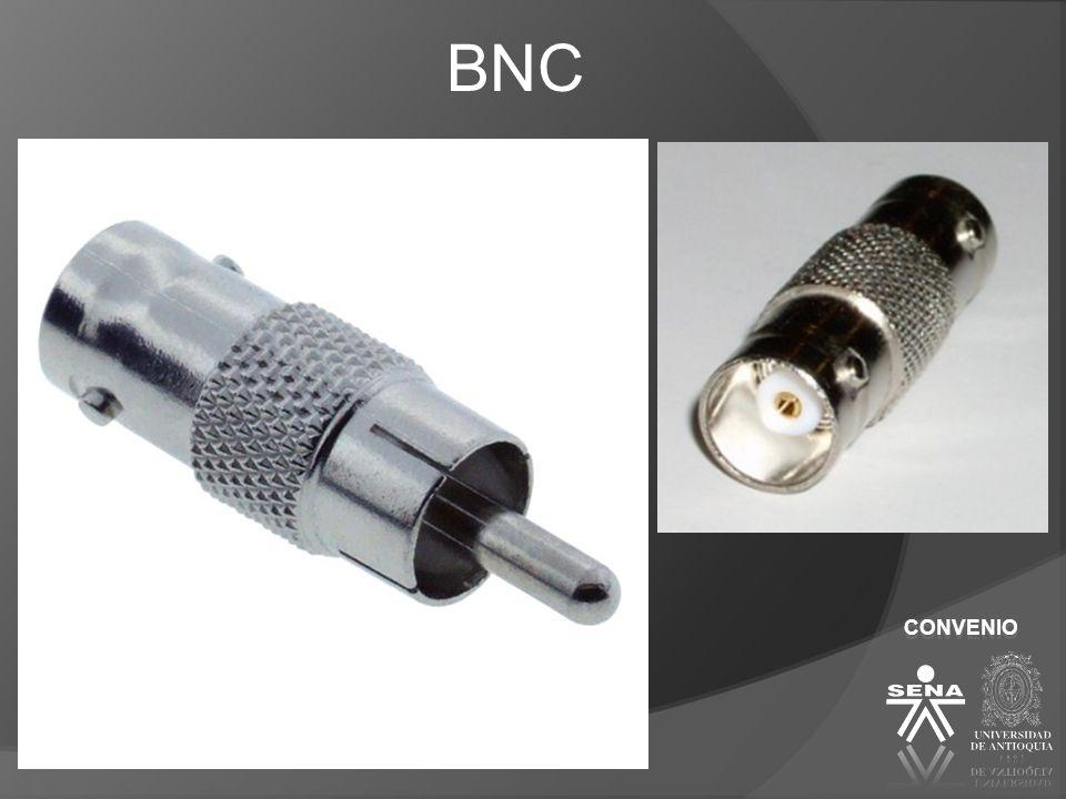 CONVENIO BNC