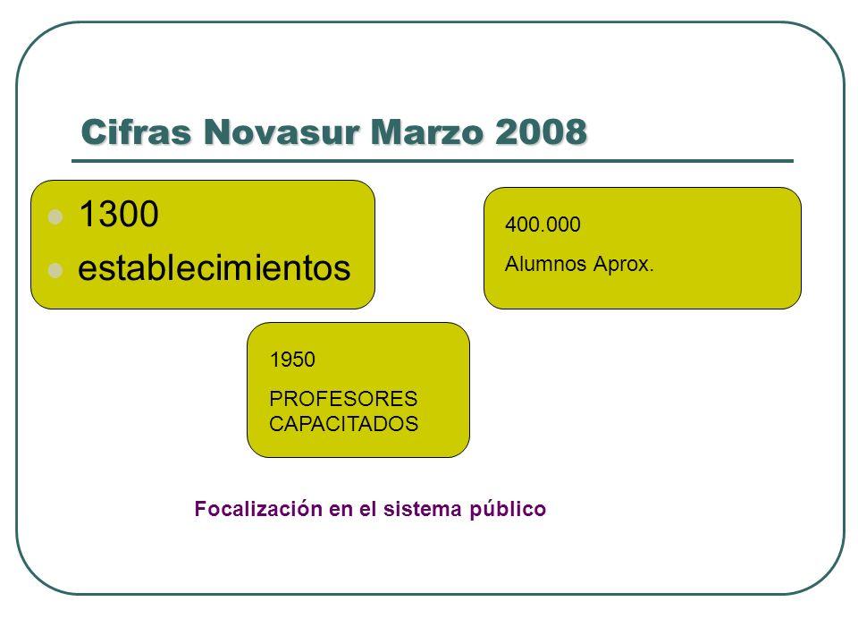 Cifras Novasur Marzo 2008 1300 establecimientos 1950 PROFESORES CAPACITADOS 400.000 Alumnos Aprox. Focalización en el sistema público