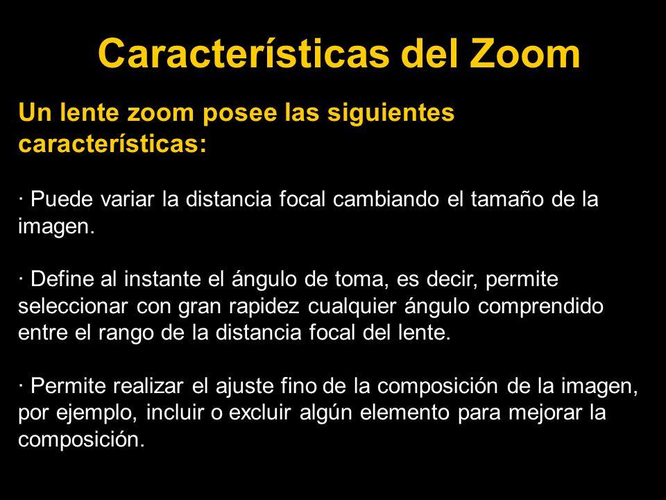 Características del Zoom Un lente zoom posee las siguientes características: · Puede variar la distancia focal cambiando el tamaño de la imagen.
