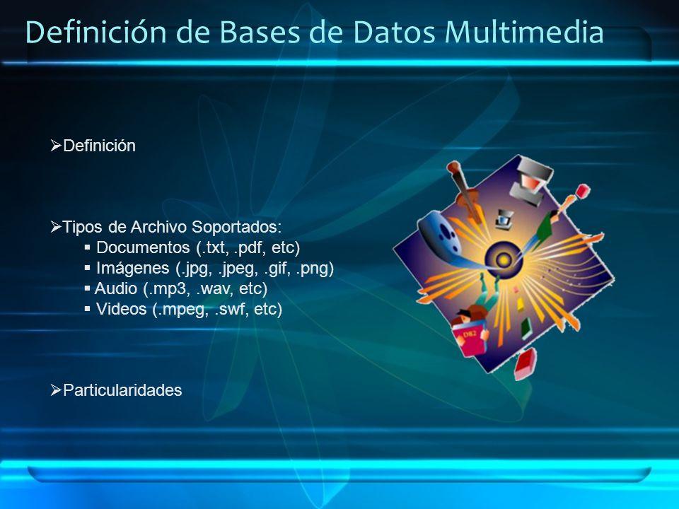 Definición de Bases de Datos Multimedia Definición Tipos de Archivo Soportados: Documentos (.txt,.pdf, etc) Imágenes (.jpg,.jpeg,.gif,.png) Audio (.mp