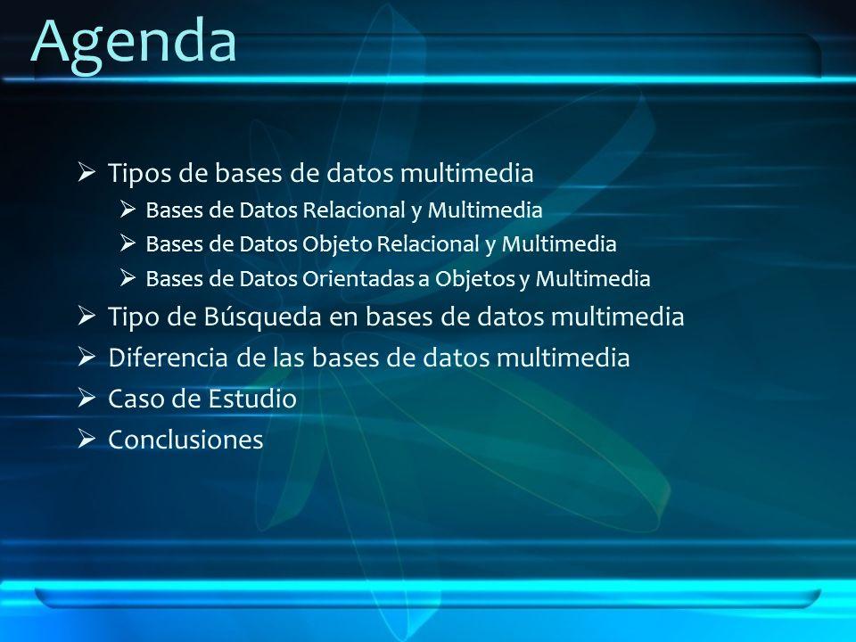 Tipos de bases de datos multimedia Bases de Datos Relacional y Multimedia Bases de Datos Objeto Relacional y Multimedia Bases de Datos Orientadas a Ob