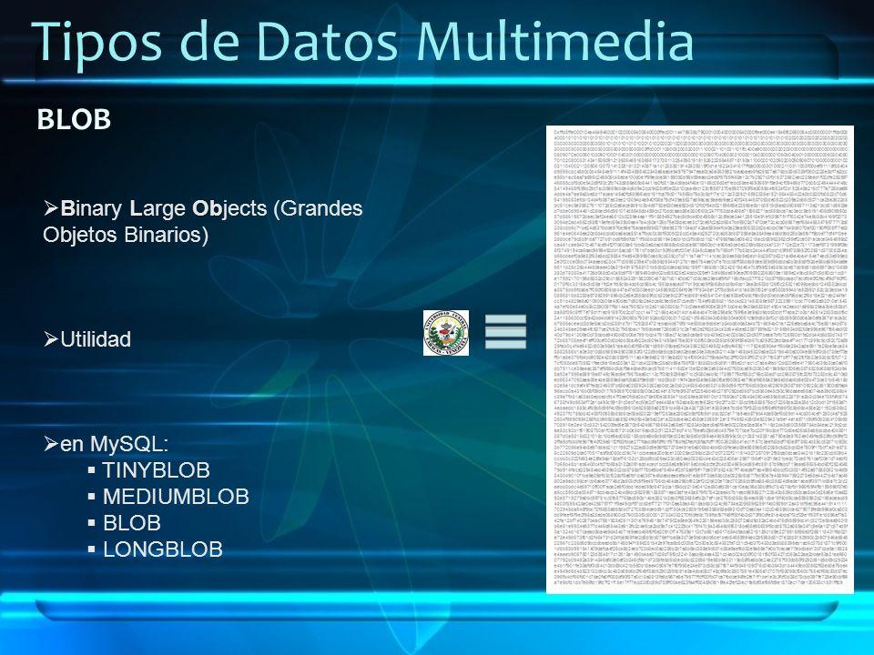 Tipos de Datos Multimedia BLOB BLOb Binary Large Objects (Grandes Objetos Binarios) Utilidad en MySQL: TINYBLOB MEDIUMBLOB BLOB LONGBLOB