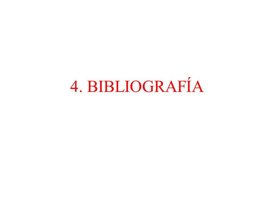 4. BIBLIOGRAFÍA