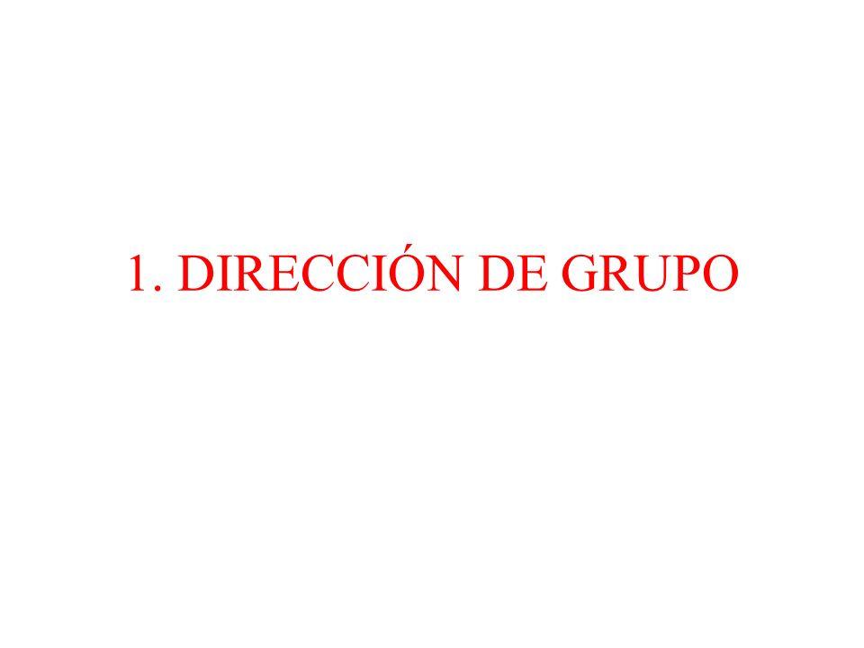 1. DIRECCIÓN DE GRUPO