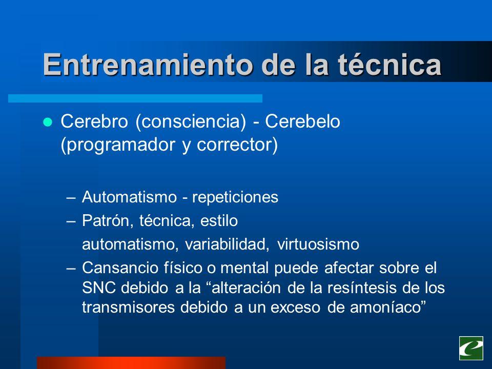 Entrenamiento de la técnica Cerebro (consciencia) - Cerebelo (programador y corrector) –Automatismo - repeticiones –Patrón, técnica, estilo automatism