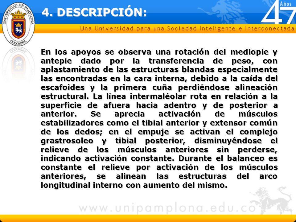 4. DESCRIPCIÓN: En los apoyos se observa una rotación del mediopie y antepie dado por la transferencia de peso, con aplastamiento de las estructuras b