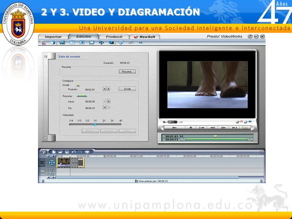 2 Y 3. VIDEO Y DIAGRAMACIÓN