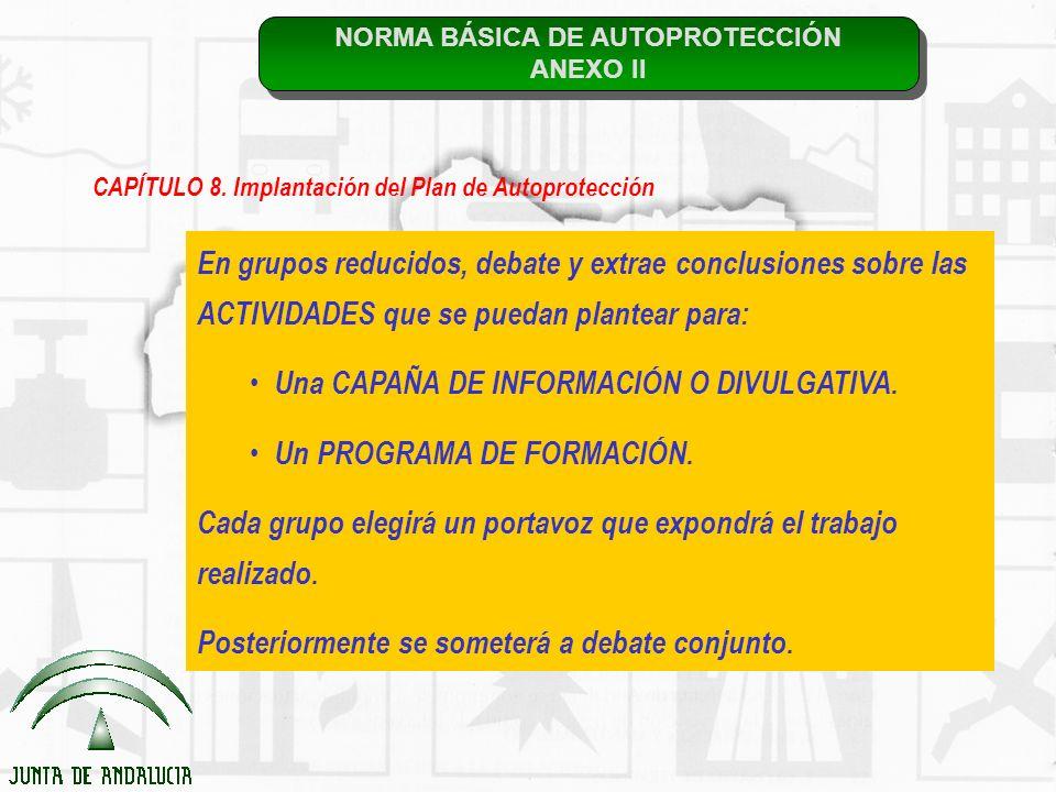 NORMA BÁSICA DE AUTOPROTECCIÓN ANEXO II NORMA BÁSICA DE AUTOPROTECCIÓN ANEXO II CAPÍTULO 8. Implantación del Plan de Autoprotección En grupos reducido