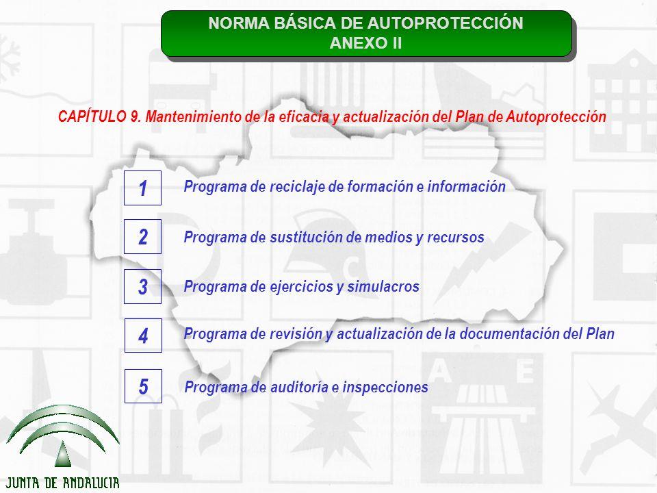 NORMA BÁSICA DE AUTOPROTECCIÓN ANEXO II NORMA BÁSICA DE AUTOPROTECCIÓN ANEXO II CAPÍTULO 9. Mantenimiento de la eficacia y actualización del Plan de A