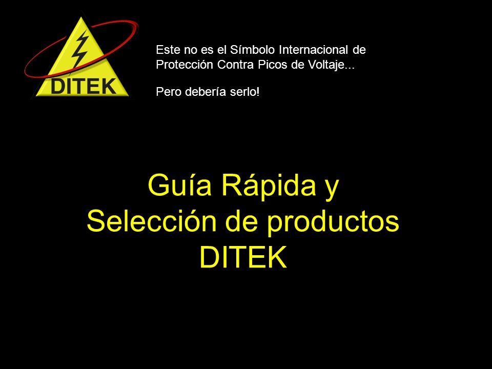 Protección contra sobretensión modular para alarmas antirrobo DTK-1F31X Protege picos en la línea telefónica y en la línea 115v para el transformador del panel.